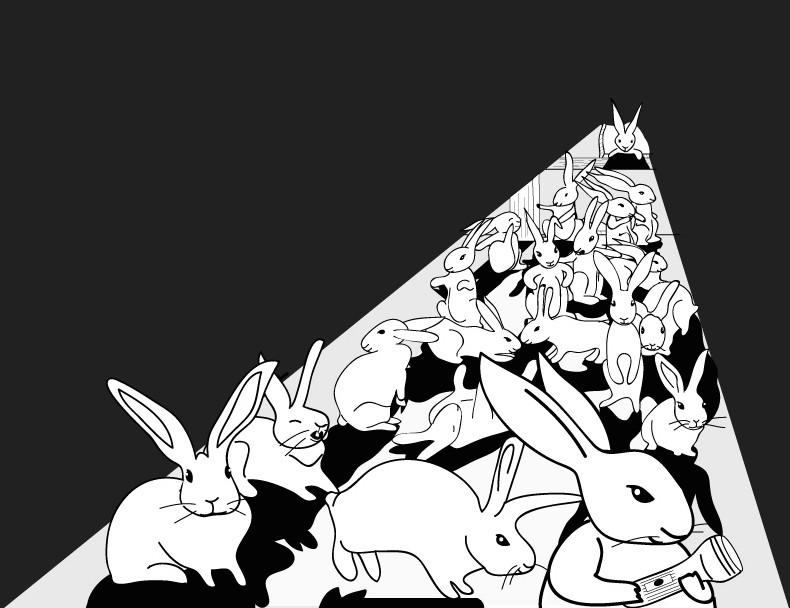 200 Rabbits